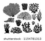 set of sea corals and seaweed... | Shutterstock .eps vector #1154781313