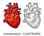 human anatomy heart. vector... | Shutterstock .eps vector #1154792296
