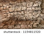 the texture of the old tree. | Shutterstock . vector #1154811520