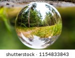 forest or woodland looking... | Shutterstock . vector #1154833843