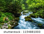 Beautiful River In Forest Nature