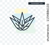 agave vector icon isolated on... | Shutterstock .eps vector #1154886133