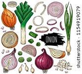 hand drawn vegetable set of... | Shutterstock .eps vector #1154919079