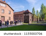 auschwitz birkenau... | Shutterstock . vector #1155003706