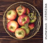 basket with apples fresh raw... | Shutterstock . vector #1155052366