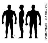 fashion man body full length...   Shutterstock . vector #1155062143