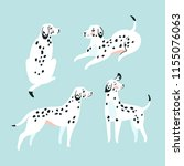cute funny white spotted dogs... | Shutterstock .eps vector #1155076063
