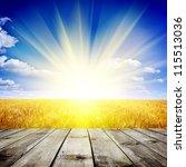 yellow wheat field under nice... | Shutterstock . vector #115513036