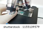 analysis of microbiological... | Shutterstock . vector #1155139579