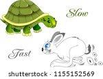 green turtle and gray rabbit... | Shutterstock .eps vector #1155152569