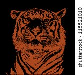 tiger head. hand drawing.... | Shutterstock .eps vector #115521010