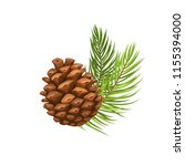 vector pine branch with cone.... | Shutterstock .eps vector #1155394000