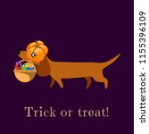 dachshund in carries a pumpkin... | Shutterstock .eps vector #1155396109