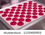 pink mousse. little pieces of... | Shutterstock . vector #1155400903