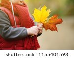 little boy during stroll in the ... | Shutterstock . vector #1155401593