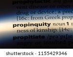 Small photo of propinquity word in a dictionary. propinquity concept.