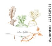 autumn vegetables  illustration ... | Shutterstock .eps vector #1155439396
