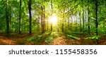 beautiful forest in spring with ... | Shutterstock . vector #1155458356