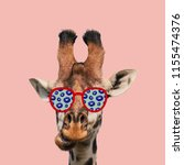 Funny Art Collage Giraffe Wearing - Fine Art prints