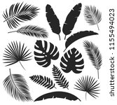 set vector silhouettes tropical ... | Shutterstock .eps vector #1155494023