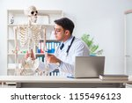 yong male doctor with skeleton...   Shutterstock . vector #1155496123