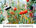 Smart Robotic Farmers In...