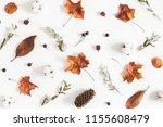 autumn composition. pattern... | Shutterstock . vector #1155608479