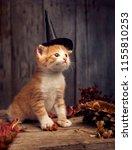 halloween pumpkin jack o... | Shutterstock . vector #1155810253