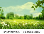 summertime  abstract natural... | Shutterstock . vector #1155812089