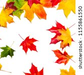 isolated falling autumn leaves. ... | Shutterstock . vector #1155861550