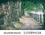 alley of sycamore trees and... | Shutterstock . vector #1155894136