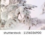 snowcowered branches. winter... | Shutterstock . vector #1156036900