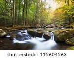 Stream In Fall Colors  The...