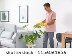 man cleaning houseplant from... | Shutterstock . vector #1156061656