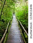 wood path after raining through ... | Shutterstock . vector #115611646