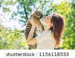 Little Baby Tiger Cub With A...