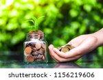 closeup of woman's hand putting ... | Shutterstock . vector #1156219606