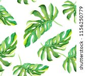 tropical monstera pattern on... | Shutterstock . vector #1156250779