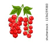red currant isolated. vector... | Shutterstock .eps vector #1156259383