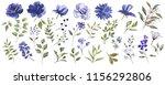 watercolor illustration.... | Shutterstock . vector #1156292806