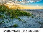 Myrtle Beach Sand Dunes At...