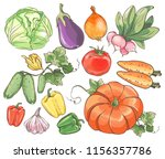 set of colorful hand drawn... | Shutterstock .eps vector #1156357786