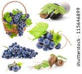 Collection Dark Grapes Bottle Cork - Fine Art prints