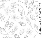 hand drawn different kinds of...   Shutterstock .eps vector #1156474159