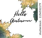 autumn background. hand drawn... | Shutterstock . vector #1156532179
