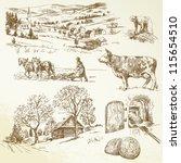 Rural Landscape  Agriculture ...