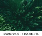 aerial top view pine forest.... | Shutterstock . vector #1156583746