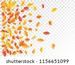 oak and maple leaf cool... | Shutterstock .eps vector #1156651099