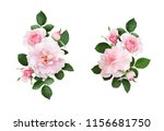 set of pink rose flowers and... | Shutterstock . vector #1156681750