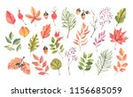 hand drawn watercolor... | Shutterstock . vector #1156685059